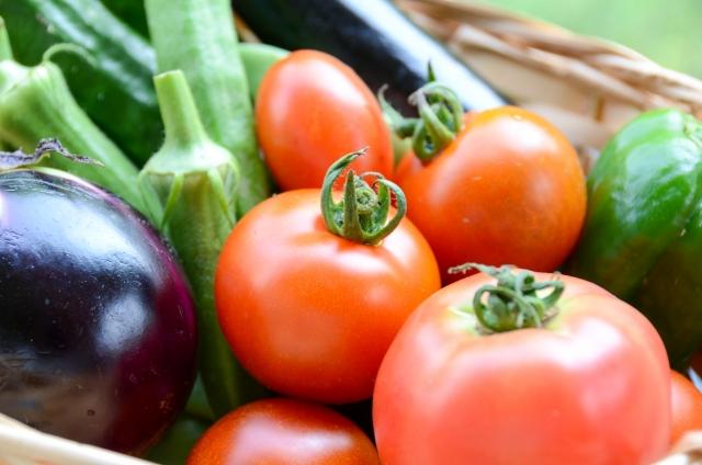 初心者でもできる家庭菜園特集:ベランダ&キッチンでOK!節約にも役立つお薦め野菜はこれ!